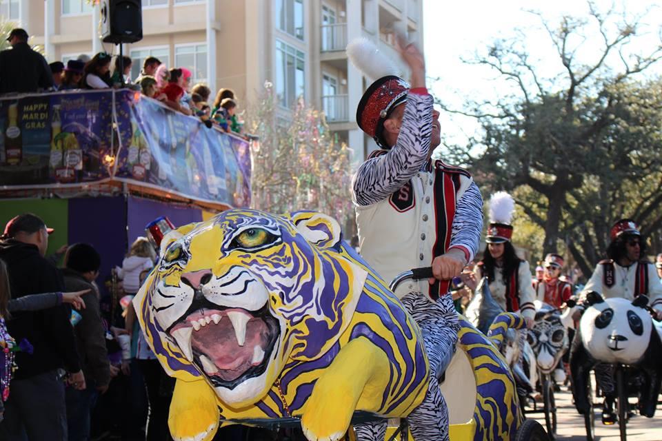 Toussaint the Tiger